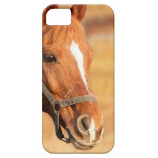 CUTE HORSE iPhone 5 CASE