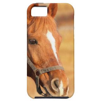 CUTE HORSE iPhone 5 COVER