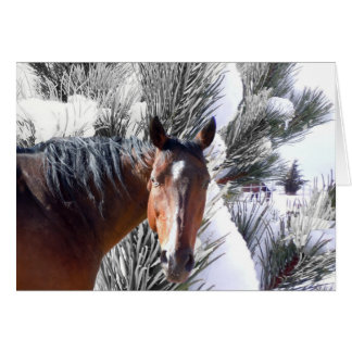 Cute Horse Lover Western Christmas Card