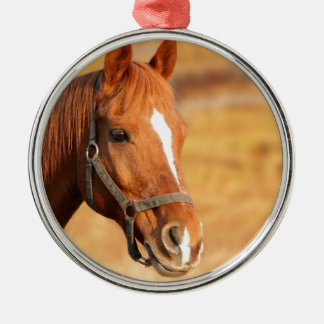 CUTE HORSE METAL ORNAMENT