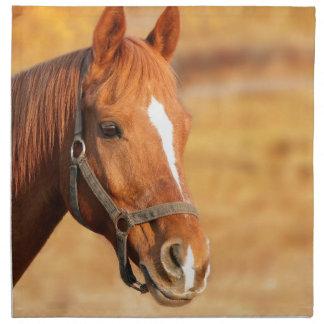 CUTE HORSE NAPKIN