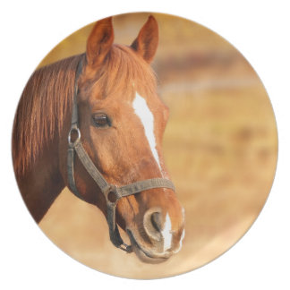 CUTE HORSE PLATE