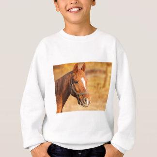 CUTE HORSE SWEATSHIRT