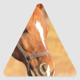 CUTE HORSE TRIANGLE STICKER