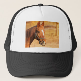CUTE HORSE TRUCKER HAT