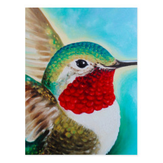Cute Hummingbird Postcard