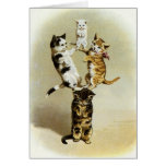 Cute Humour, Vintage Victorian Cats Kittens