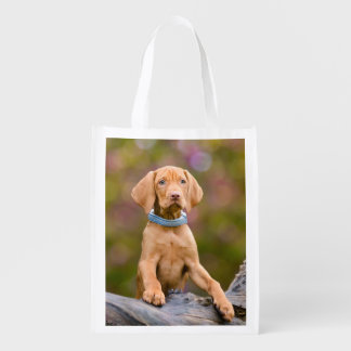 Cute Hungarian Vizsla Dog Puppy Photo - reuseable Market Tote