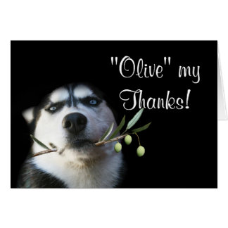 Cute Husky Dog Thank You Card Humorous Olive