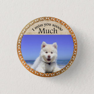 Cute Husky's with blue eye sitting on the beach 1 Inch Round Button