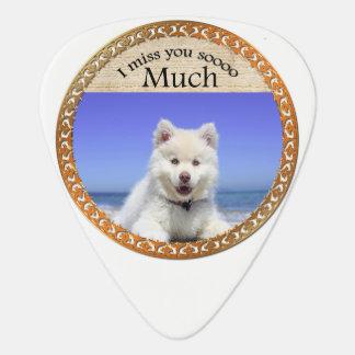 Cute Husky's with blue eye sitting on the beach Guitar Pick