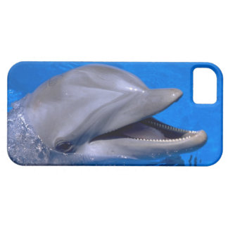 Cute iPhone 5 Cases Beautiful Dolphin