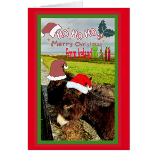 Cute Irish Santa Donkeys Christmas Card