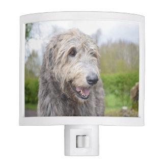 Cute Irish Wolfhound Night Lites
