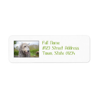 Cute Irish Wolfhound Return Address Label