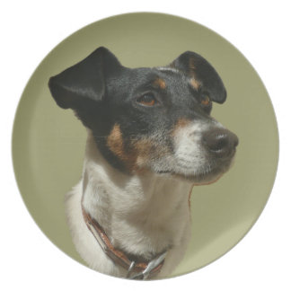 Cute Jack Russell Dog Plate