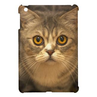 Cute Kitten Cat Face iPad Mini Case, Hard Shell iPad Mini Case