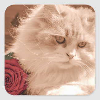 Cute Kitten/Cat With Red Rose, Glossy Stickers