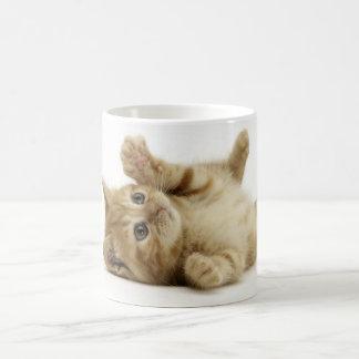 Cute Kitten Classic White Coffee Mug