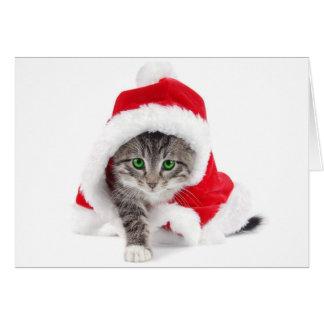 Cute Kitten in Santa Suit Christmas Card