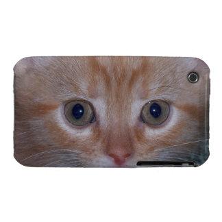 Cute Kitten iPhone 3 Case