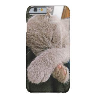 Cute Kitten IPhone 6 cover