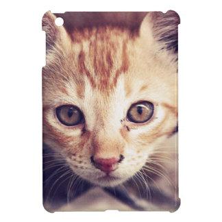 Cute Kitten looking at YOU iPad Mini Cases