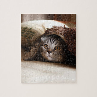 Cute kitten looking from sofa jigsaw puzzle
