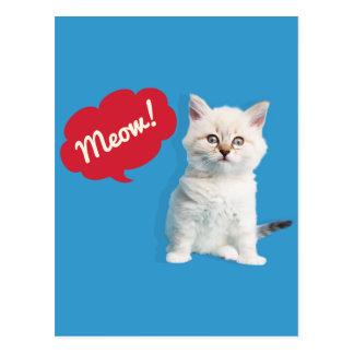 Cute Kitten Meow Caption Postcard