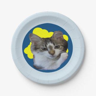 Cute Kitten Paper Plates