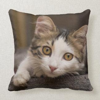 Cute kitten peeking out, Turkey Throw Pillow