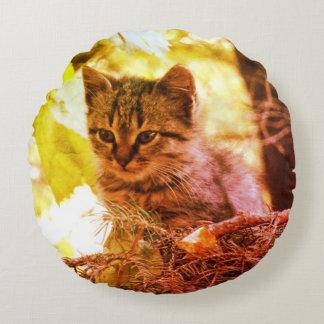 Cute Kitten Photo Baby Cat  Round throw cushion