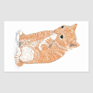 Cute Kitten  Products