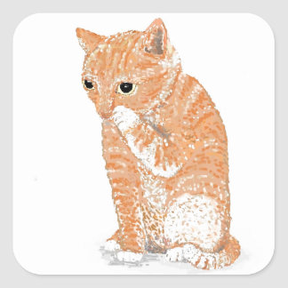 Cute Kitten  Products Square Sticker