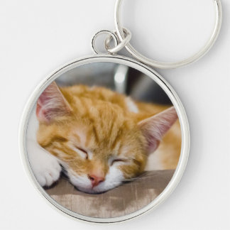 Cute Kitten Silver-Colored Round Keychain