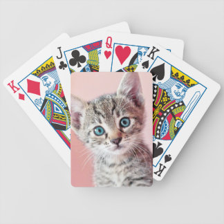 Cute kitten with blue eyes. bicycle playing cards
