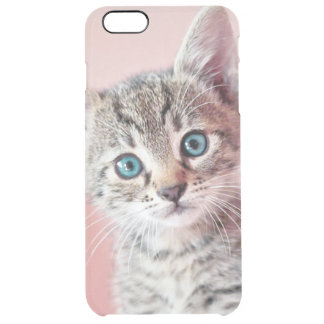 Cute kitten with blue eyes. clear iPhone 6 plus case