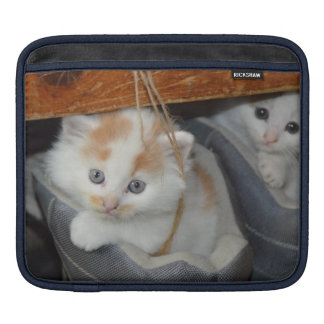 Cute Kittens in boots Sleeves For iPads