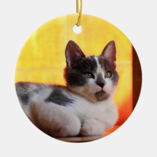 Cute Kitty in the Sunshine Round Ceramic Ornament