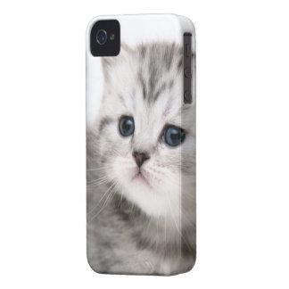 Cute Kitty iPhone 4/4s Phone Case