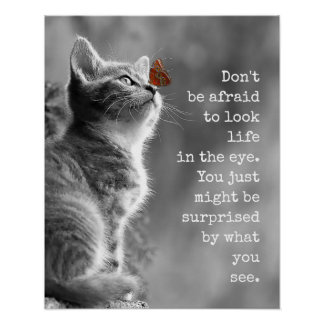 Cute Kitty Look Life In the Eye Motivational Quote Poster