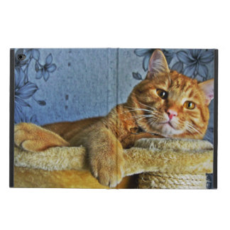 Cute Kitty Powis iPad Air 2 Case