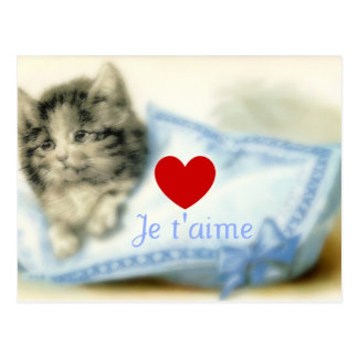 Cute kitty with pillow and love postcard