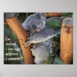 Cute Koala Bear, i'm retired, i can nap anytime!! Poster