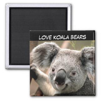 Cute Koala Bear Magnet