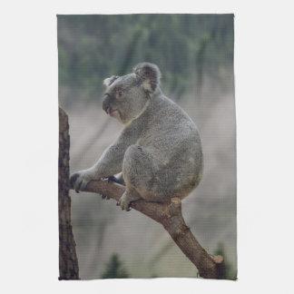 Cute koala bear on a eucalyptus tree kitchen towel