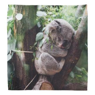 Cute Koala Bear relaxing in a Tree Head Kerchiefs