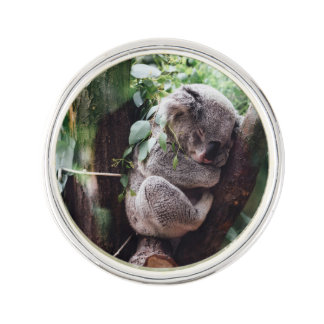 Cute Koala Bear relaxing in a Tree Lapel Pin
