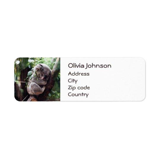 Cute Koala Bear relaxing in a Tree Return Address Label