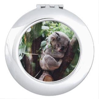 Cute Koala Bear relaxing in a Tree Vanity Mirrors
